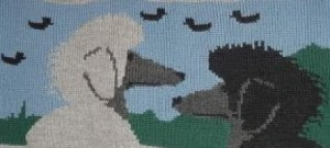poodle_scenic1a